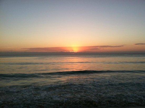 Petit Lafitte : Sunrise