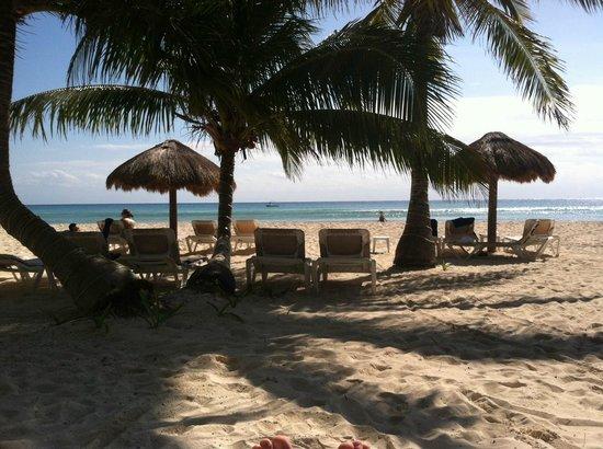 Petit Lafitte : beach palapas