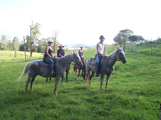 'Brooloo Park' Eco Retreat & Equine Resort : Trail Rides