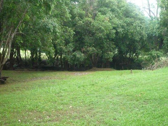 'Brooloo Park' Eco Retreat & Equine Resort: Exclusive Eco site 4 bottom level