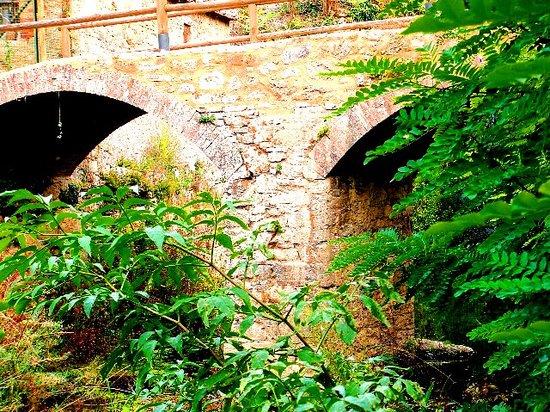 Molino dei Preti : il ponte Romano di età Domiziana