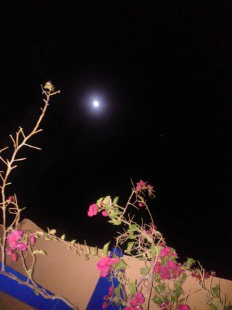 Paradis Plage Surf Yoga & Spa Resort : lune vue de la terrasse de la suite