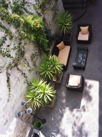 El Patio de Elisa : the patio