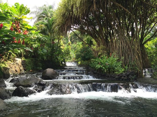 Tabacon Thermal Resort & Spa : Hot Spring