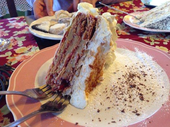 Inmigrante: Torta española