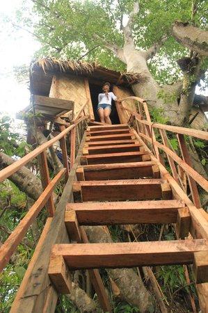 Tanna Lava View Bungalows: Tree house