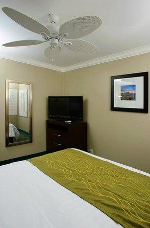 Hi View Inn & Suites : Studio Room