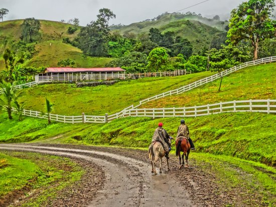 Desafio Monteverde Tours -  Day Tours: Rounding the corner during the horseback leg of the trip