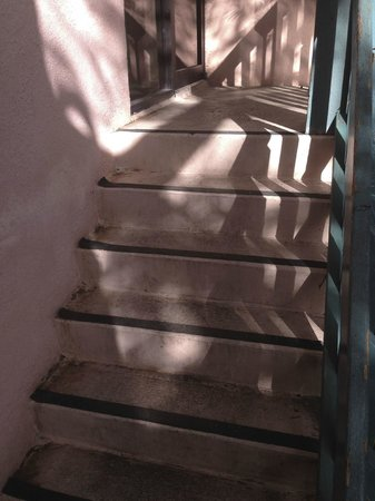 Banana Bay Resort and Marina Marathon: These were the steps leading to the side entrance of the building we stayed in.