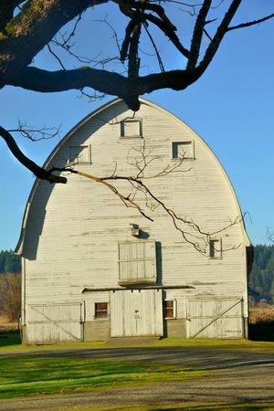 Nisqually National Wildlife Refuge : Historic barn