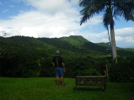Ceiba Country Inn: View in the front