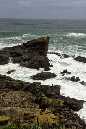 Cape Foulwind Walkway: A very rocky and windy coast
