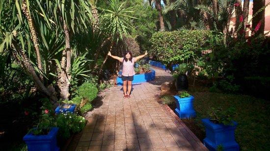 Hotel Marrakech le Semiramis: Garden area