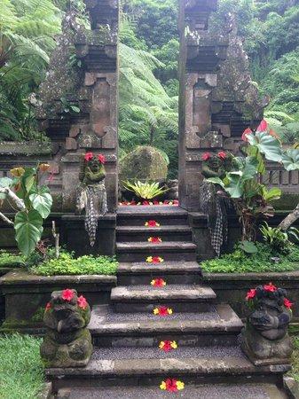 The Royal Pita Maha: Holy Pool Entrance