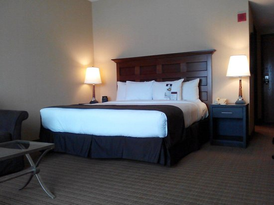 Doubletree Hotel Chicago O'Hare Airport - Rosemont: Room