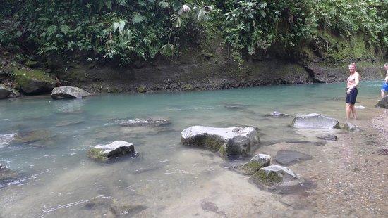 La Fortuna Waterfall: Swimming area...chilly water