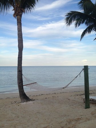 Old Bahama Bay : Relax on a hammock