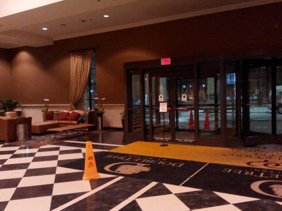 Doubletree by Hilton Chicago O'Hare Airport - Rosemont: Lobby