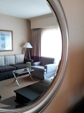 Doubletree by Hilton Chicago O'Hare Airport - Rosemont: Sofa