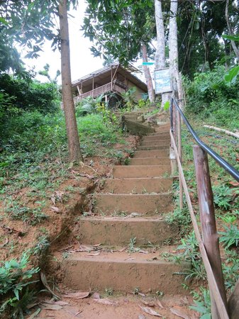 Sea n Jungle Resort: Long stairs to rooms