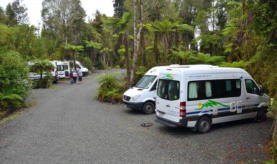 Rainforest Retreat: Camping in the bush