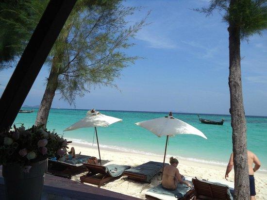 Idyllic Concept Resort: azul azul