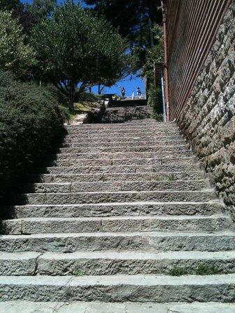 Ruca Hueney Hostel: Escadaria na rua ao lado (Palacios)