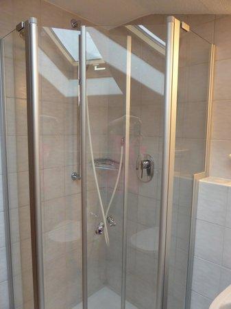Gästehaus Brigitte: Shower