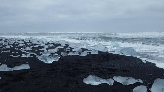 Gletscherlagune Jökulsárlón: black volcanic sand beach strewn with ice berg fragments