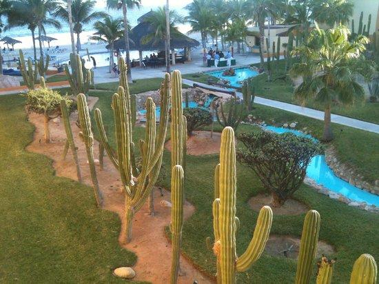 Posada Real Los Cabos: Cacti Garden and Beach