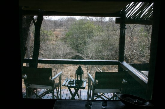 Chapungu Tented Bush Camp: The view from the bed
