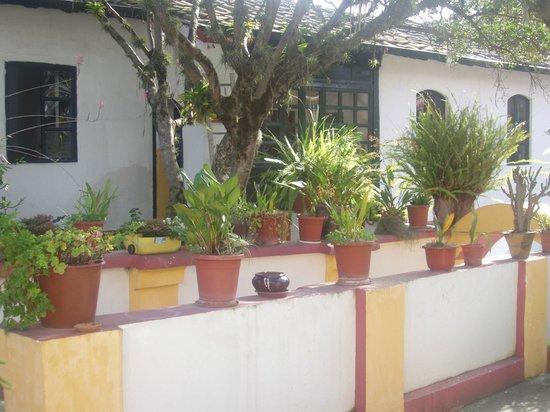 Hotel Riviera-Sucre: Garden