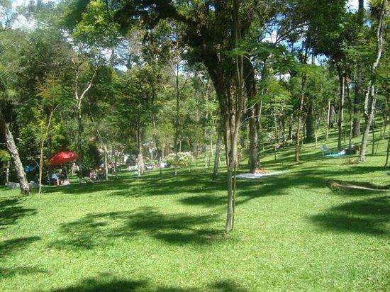 Campo Largo, PR: .