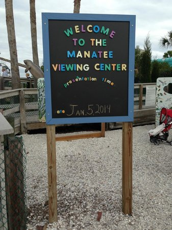 Tampa Electric's Manatee Viewing Center : Manatee Viewing Center
