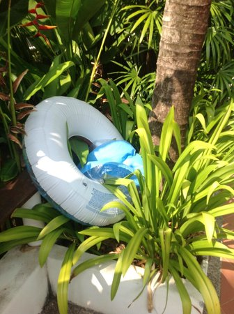 The Signature Phuket Resort: This broken pool floating ring has been sitting in the bushes for over a week
