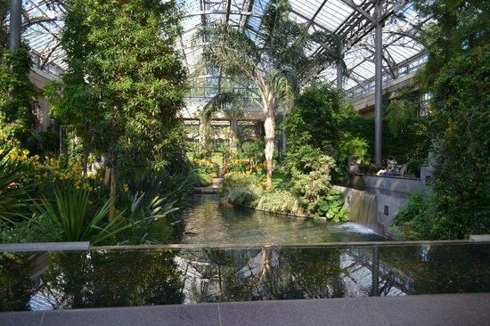 Longwood Gardens : CONSERVATORY
