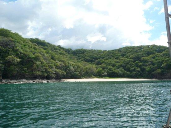 Wild & Fun: Playas