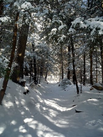 Monument Mountain: snowy trail