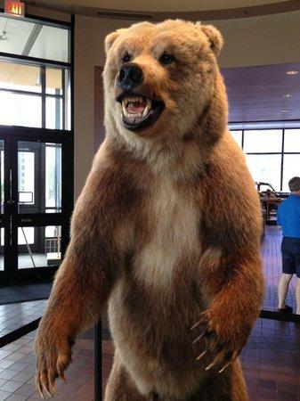 Grand Rapids Public Museum: Grand Rapids Museum