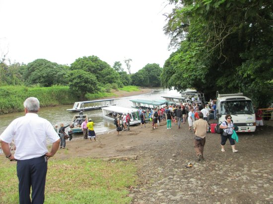 Jungle Tom Safaris Day Tours: Trip leaving mainland....