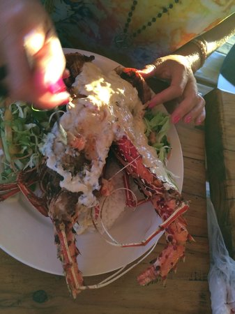 Ratu Kini's Backpackers and Dive Resort: Lobster!