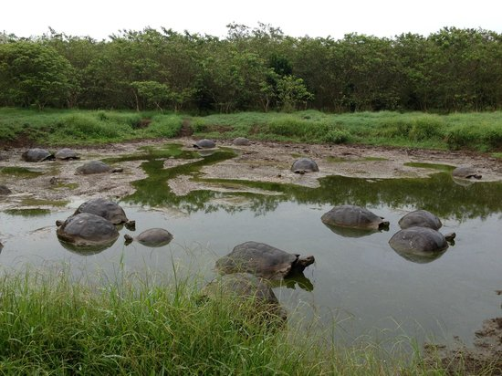 Reserva El Chato: Bathtime
