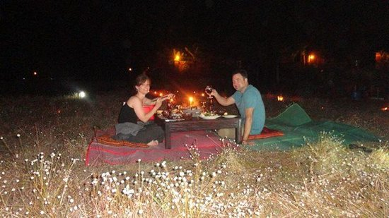 Angkor Rural Boutique Resort: dinner in the rice field