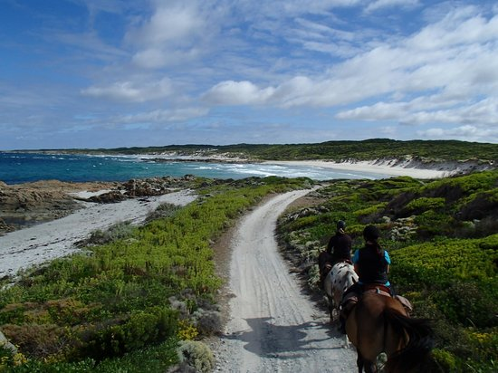 King Island Trail Rides: A ride with a view