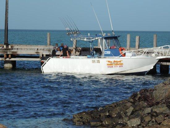 Bay Lodge : Mac Attack Fishing Charter