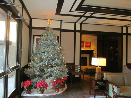 The Ambrose: Christmas tree in the lobby