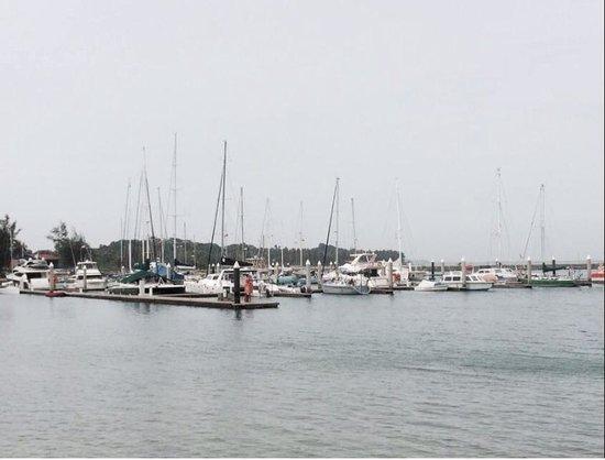 Nongsa Point Marina & Resort : Seaview