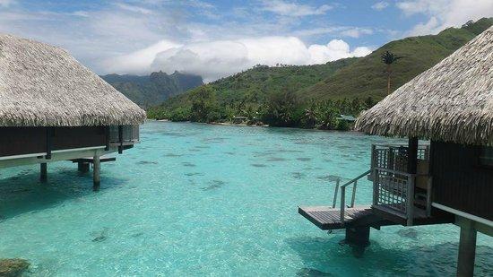 Hilton Moorea Lagoon Resort & Spa: OWB