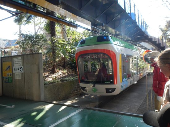 Ueno Zoo: Zoo Monorail