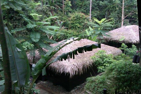 Tanah Aina Farrah Soraya Resort: A view from the room